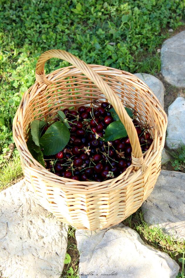 clafoutis di ciliegie 2
