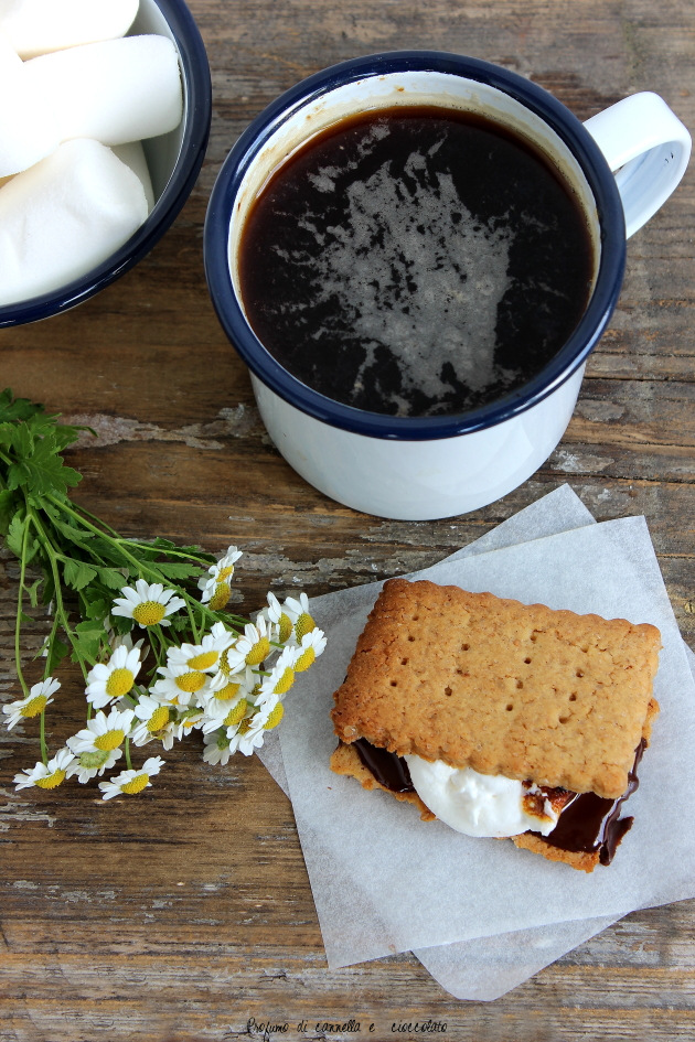 s'mores 11
