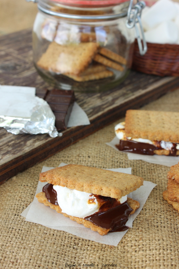 s'mores 3