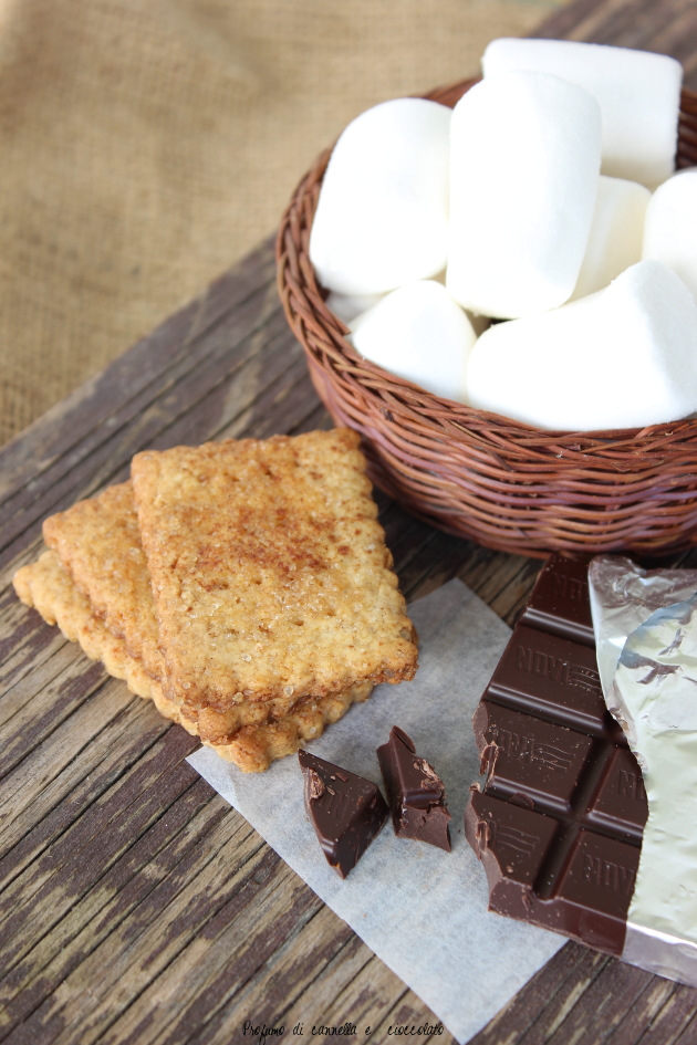 s'mores 5