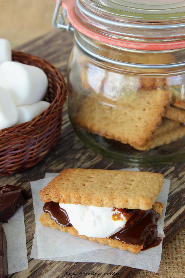 s'mores 7