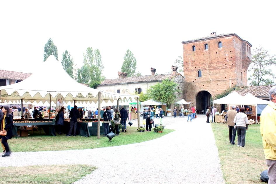 castello di paderna - frutti antichi (9)