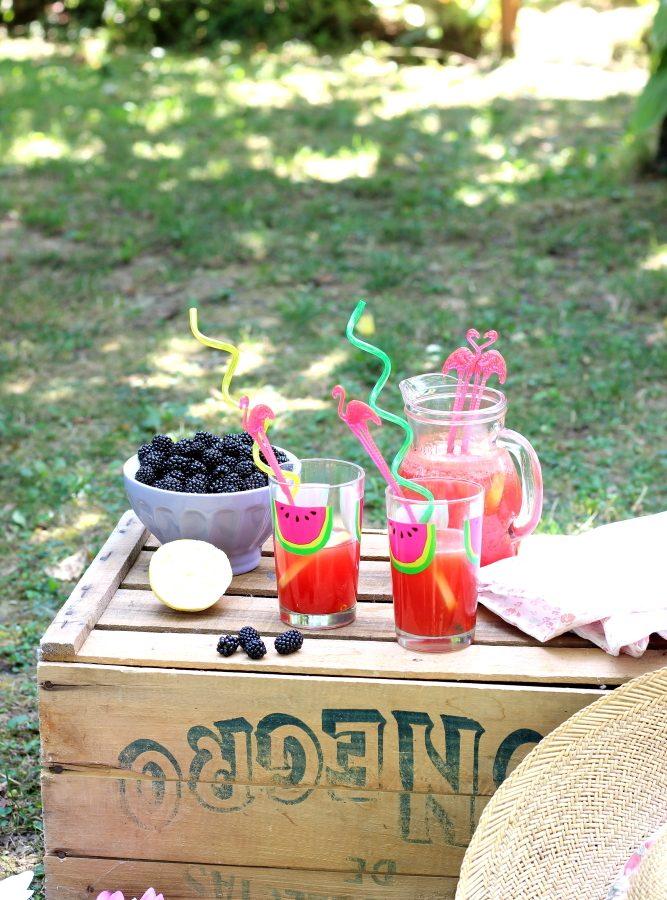 Limonata all'anguria  (3)