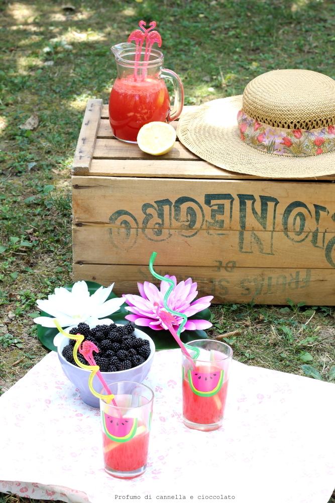 Limonata all'anguria (5)