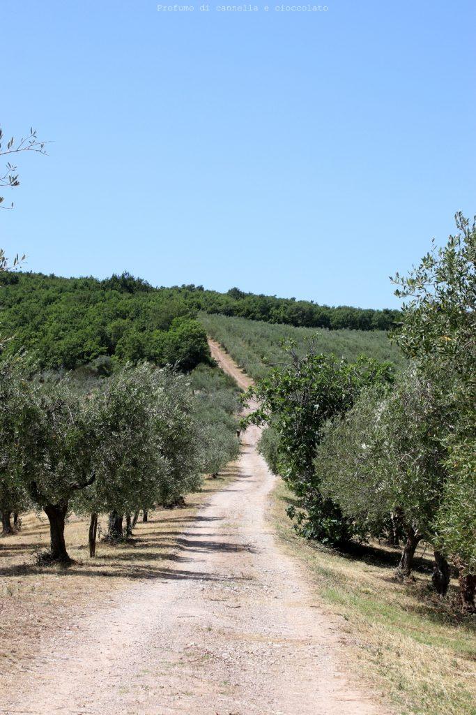 Blog Tour Mastri Birrai Umbri alla scoperta del Gruppo Farchioni