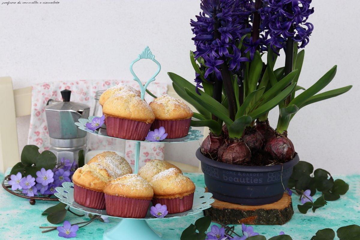Muffin semplici alla vaniglia