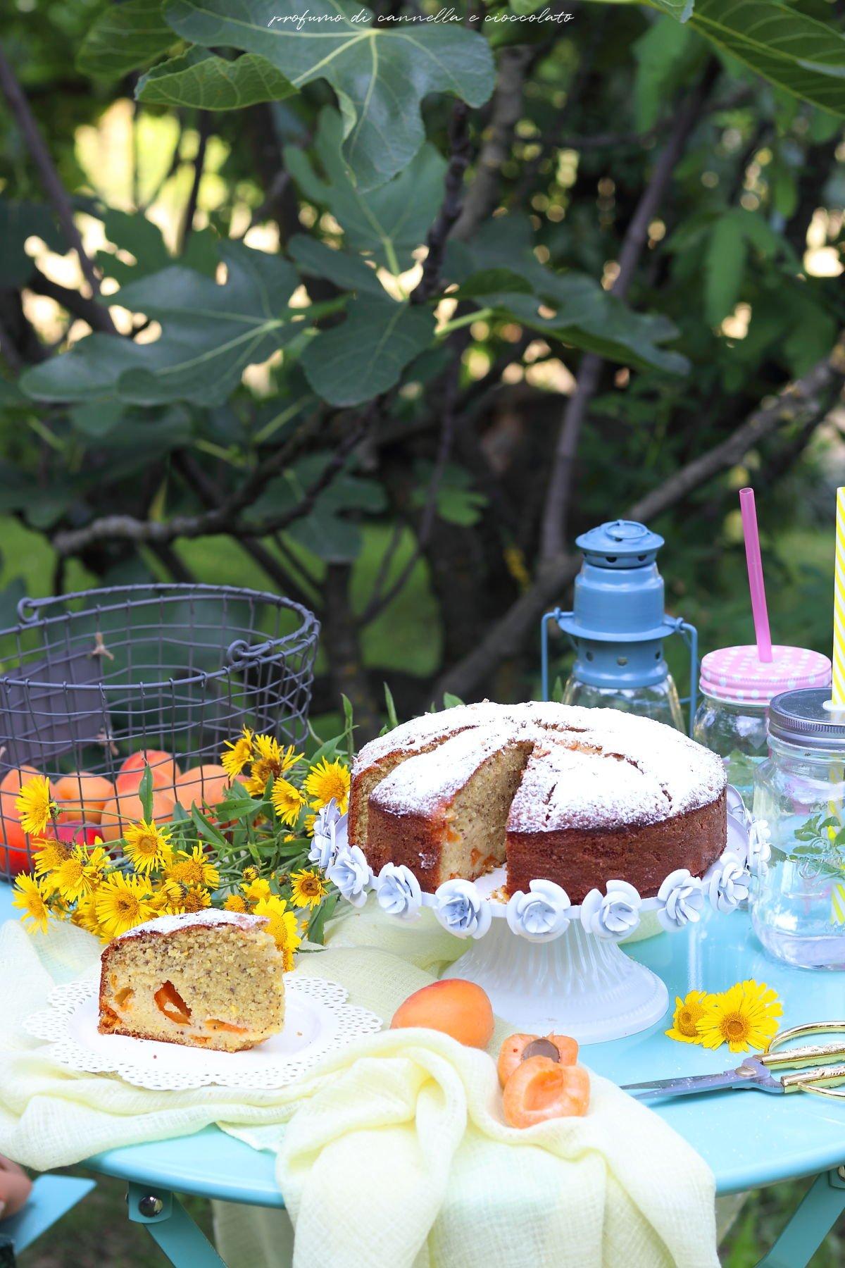 Torta soffice mandorle e albicocche
