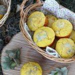 Muffin alla zucca e gorgonzola